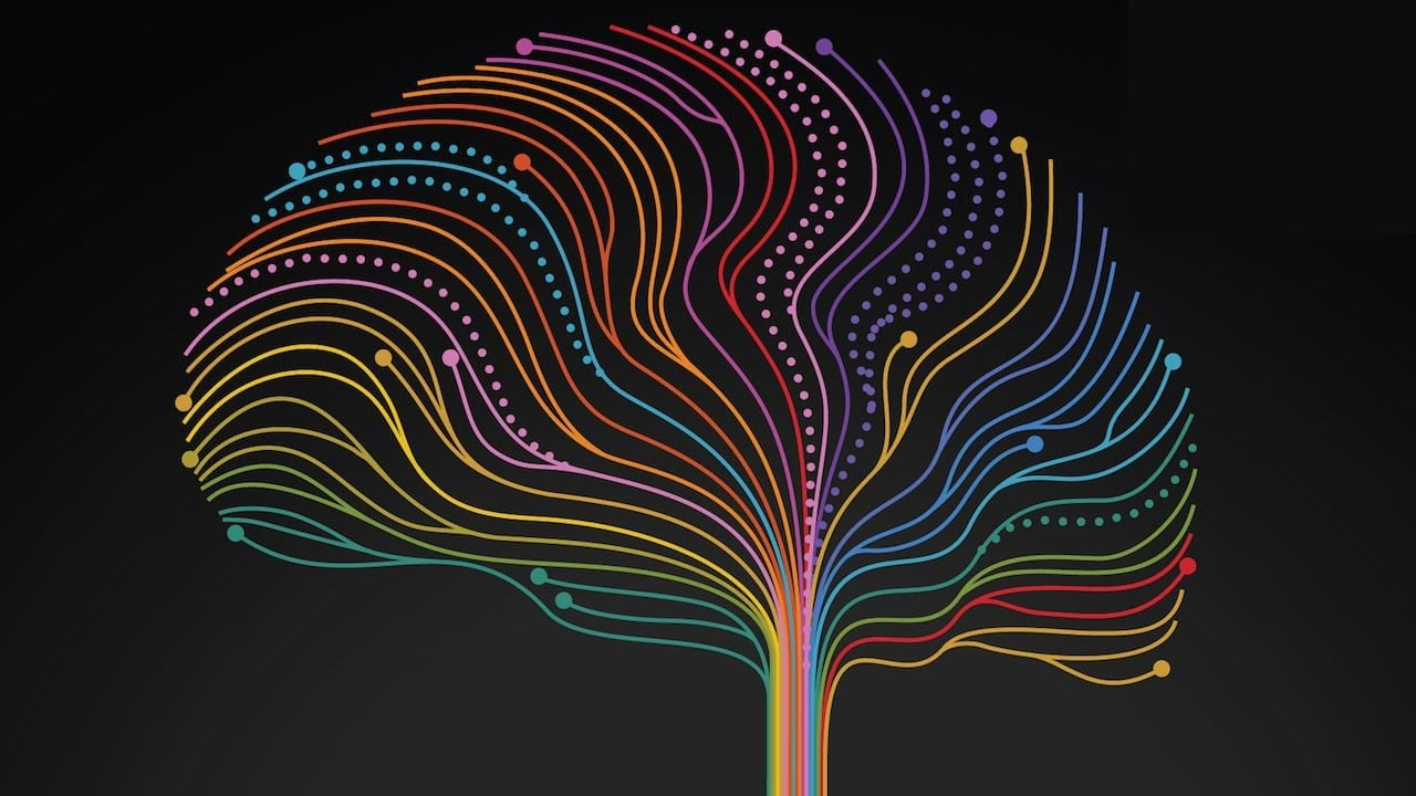 Neuroplasticity: Powerful Possibilities . . . With a Dark Side